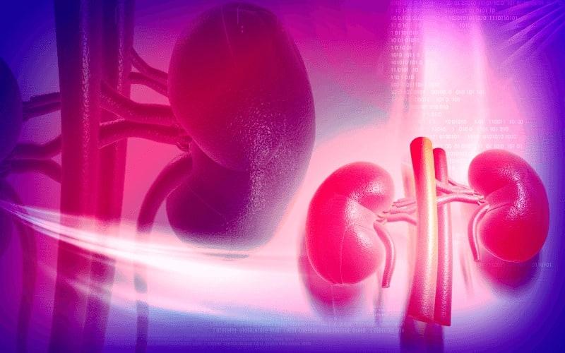 Диабетна нефропатия