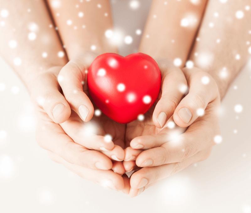сърдечно-съдовата система