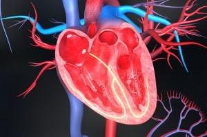 Разберете дали имате проблеми с кръвообращението