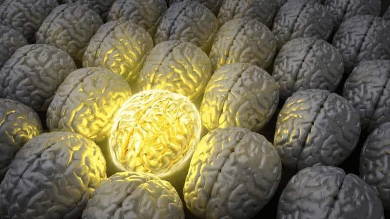 мозъчно оросяване