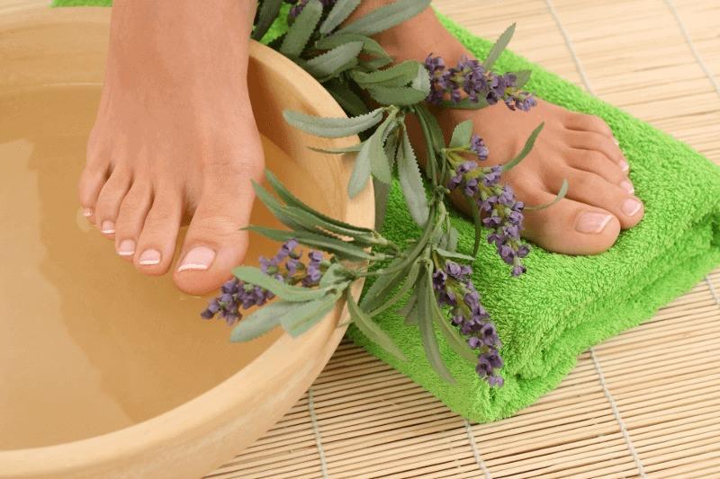разширени вени домашно лечение