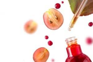 Проантоцианидин – как действа върху кръвоносните съдове?